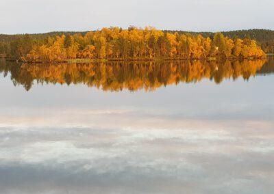 Inarin järven rannan metsä ruskan väreissä_LAP_Adventures
